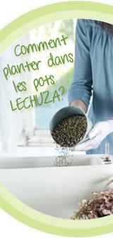 Comment planter dans les pots LECHUZA?