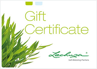 gift certificate green