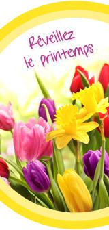 Idées pour un printemps fleuri